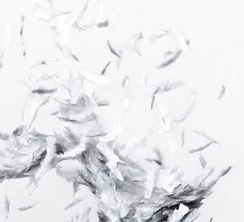 Plaistow — Lacrimosa