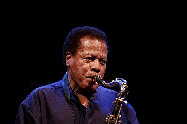 Wayne Shorter, 2012 (photo by Kristoffer Juel Poulsen)
