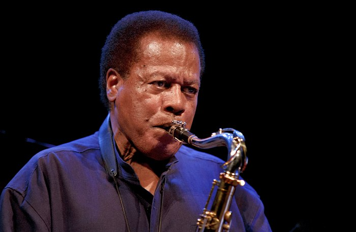 Best Improvised Jazz Solo: Wayne Shorter