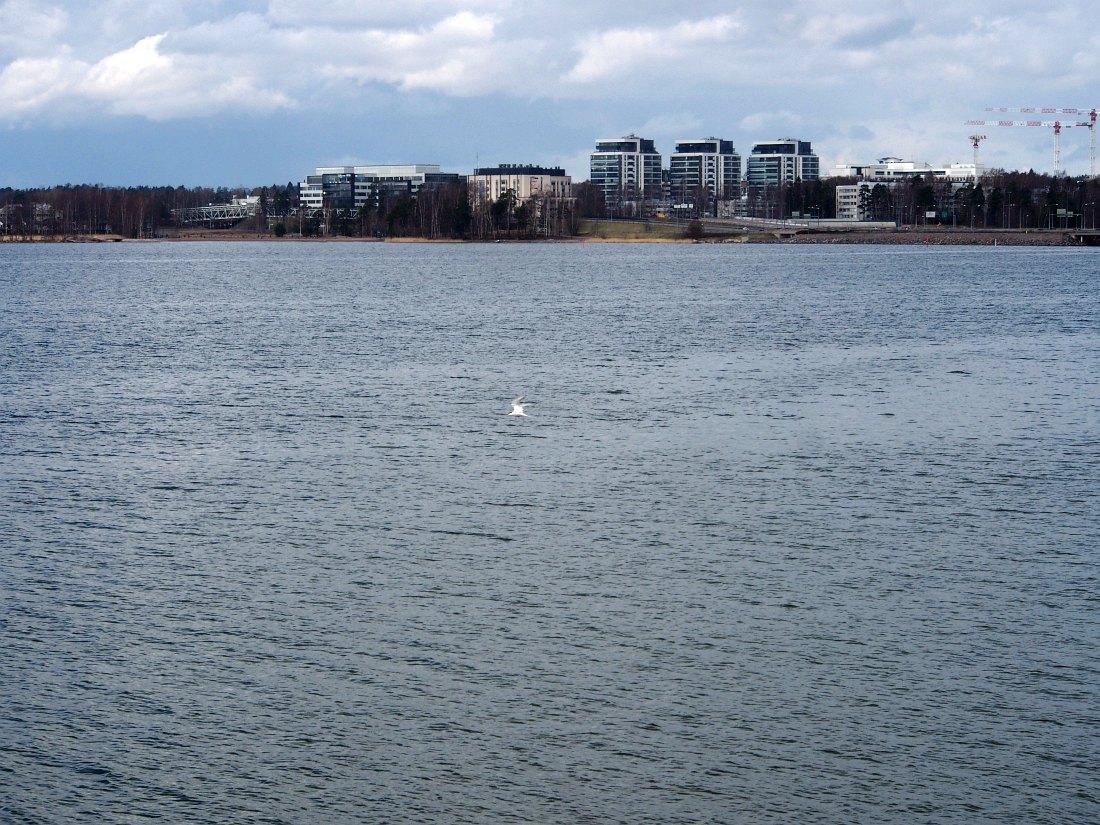 Эспоо. Вид с Финского залива
